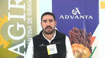 Ing. Agr. Mauro Morenos - Advanta