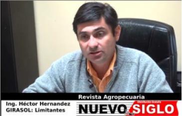Ing. Agr. Héctor Hernández hablando de los ActiveCrops de AgroCube para girasol