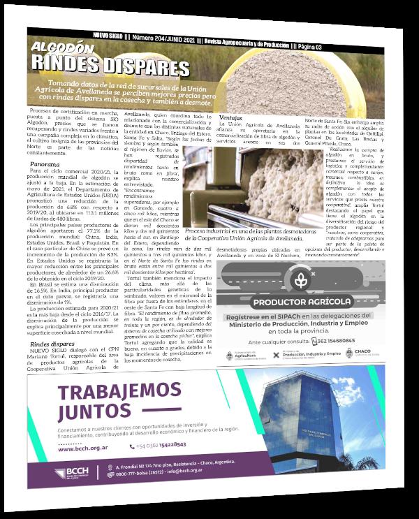 Artículo de la Revista Agropecuaria Nuevo Siglo con la entrevista al CPN Mariano Tortul, que con datos de la Cooperativa Unión Agrícola de Avellaneda analiza las diferencias de rendimiento de la campaña algodonera 20/21