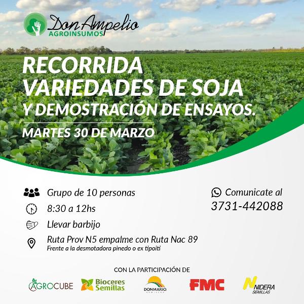 Nuevas tecnologías en soja, jornada a campo organizada por Agroinsumos Don Ampelio