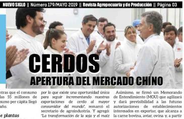 Cerdos, la apertura del mercado Chino representa un gran desafío para Argentina