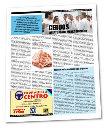 Cerdos, la apertura del mercado chino y la peste porcina africana abre excelentes posibilidades para la Argentina