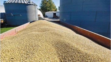 El transporte de granos no hace paro en Chaco