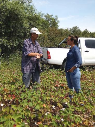 Las nuevas generaciones en el sector agropecuario
